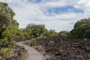 Rangitoto Volcano