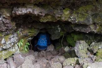 Lava caves at Rangitoto