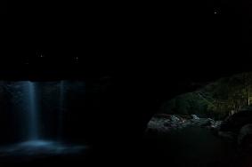 Glowworms in the Natural Bridge at Springbrook National park