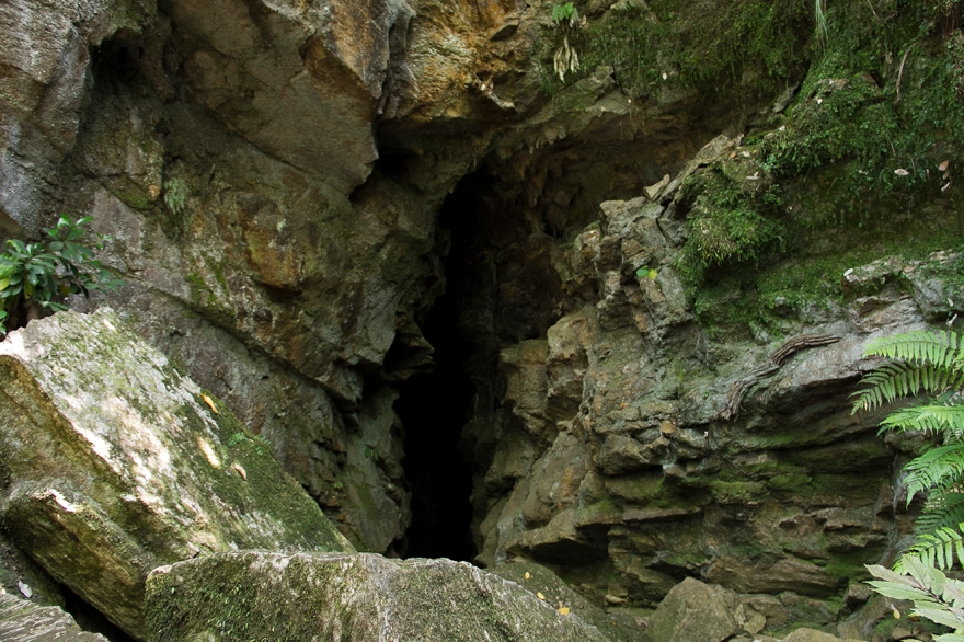 Ivy Cave entrance