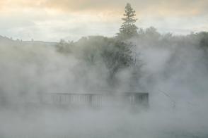 Rotorua geothermal area